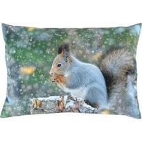 Sander Dekorační polštářek Snow squirrel, 35 x 50 cm