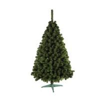 Nordmann karácsonyi fenyőfa, 160 cm