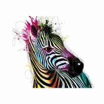 Designová fototapeta XXL Zebra, 364 x 252 cm