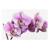 Prestieranie Orchidea 28 x 43 cm, sada 4 ks