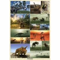 Fototapeta Dinosaury Discovery, 158 x 232 cm