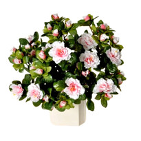 Umělá květina Azalka světle růžová, 35 cm