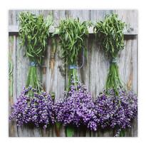 Obraz na plátne Gimont Lavender 58 x 58 cm