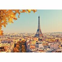 Fototapeta XXL Paris, 364 x 252 cm