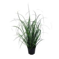 Umělá Kytice trávy v květináči zelená, 50 cm