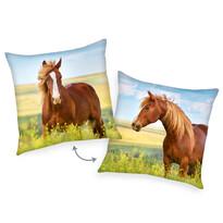 Polštářek Kůň hnědá, 40 x 40 cm