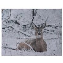 Deer in winter LED vászonkép, 40 x 30 cm