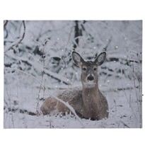 Tablou LED Deer in winter, 40 x 30 cm