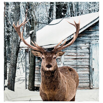 Koc Home & Styling Deer, 140 x 160 cm