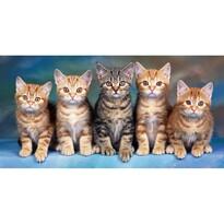 Macskák törülköző, 70 x 140 cm