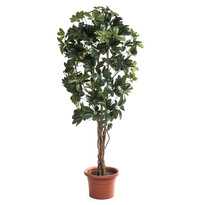 Sztuczne drzewko schefflera, 140 cm