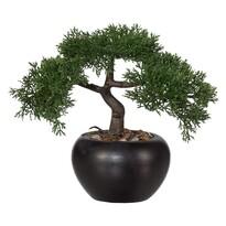Umělá bonsaj Cedr, 26 cm