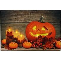 LED Obraz na plátně Pumpkin, 60 x 40 cm