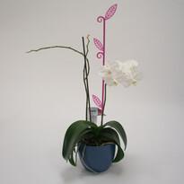Tyčka k orchideji list, priesvitná fialová, 2 ks