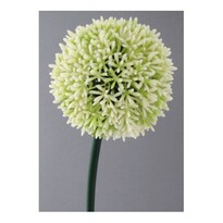 Umělá květina Česnek bílá, 68 cm