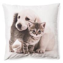Față de pernă Cățel și pisicuță ghemuiți 6,  40 x 40 cm