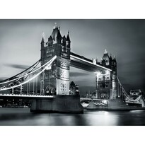 Fototapeta Tower Bridge, 232 x 315 cm
