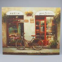 Obraz na plátně Bicykle