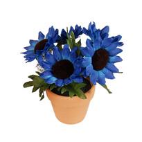 Umelá kvetina slnečnica v kvetináči, modrá, modrá