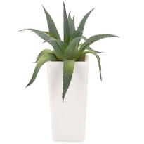 Umělá Aloe Vera v květináči, 20 cm