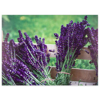 Obraz na plátne Lyon Lavender, 78 x 58,5 cm