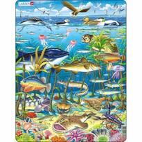 Larsen PuzzleZwierzęta w morzu, 60 części